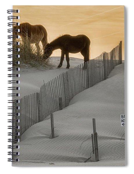 Golden Horses Spiral Notebook
