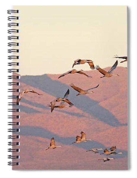 Golden Hour Light Spiral Notebook