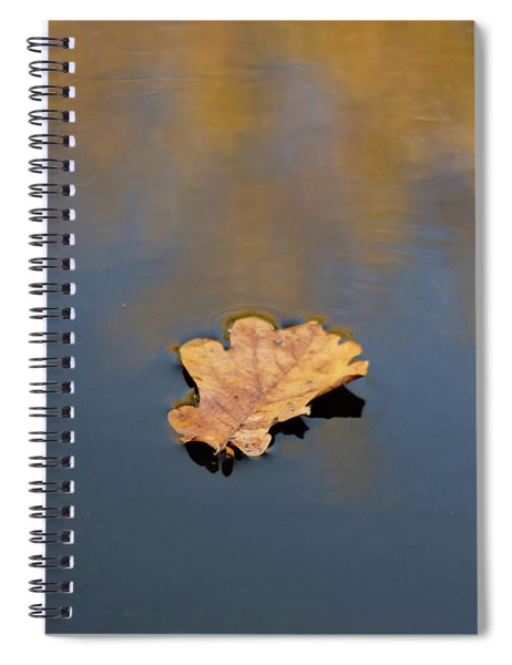 Spiral Notebook featuring the photograph Golden Leaf On Water by Scott Lyons