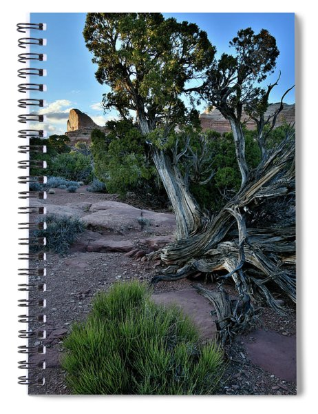 Golden Thumb At Green River Overlook In Canyonlands Spiral Notebook