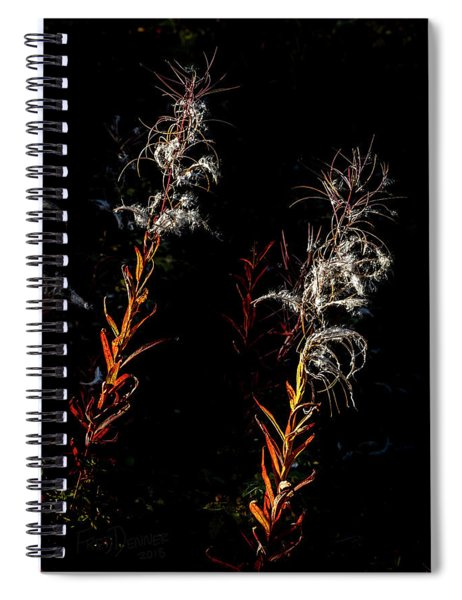 Gone To Seed Spiral Notebook