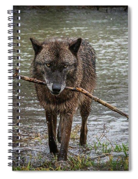 Got The Stick Spiral Notebook