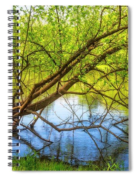 Graceful Spring Spiral Notebook