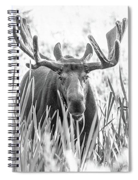 Grand Entry  Spiral Notebook