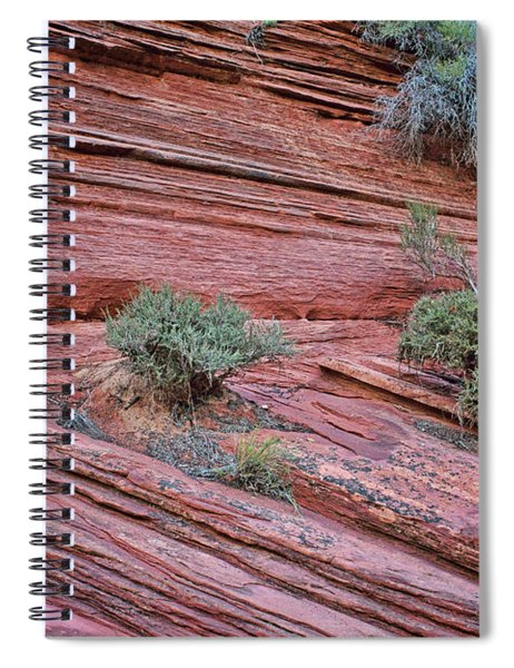 Grand Wash Abstract - No 1 Spiral Notebook