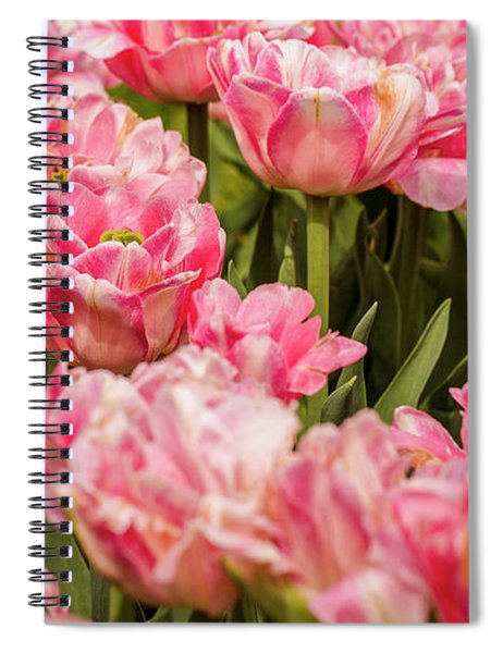 Grandmotherly Spiral Notebook