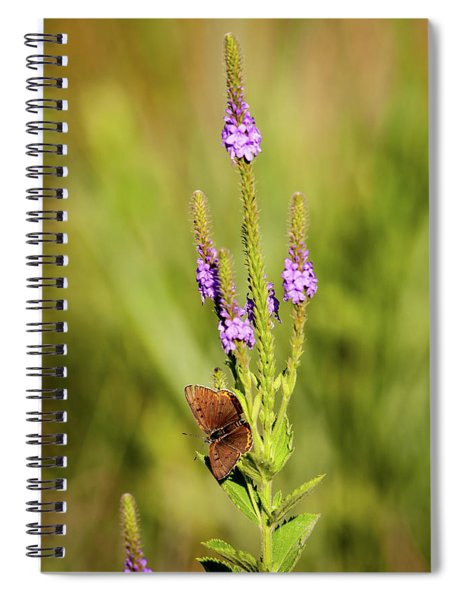 Gray Copper On Blazing Star Spiral Notebook