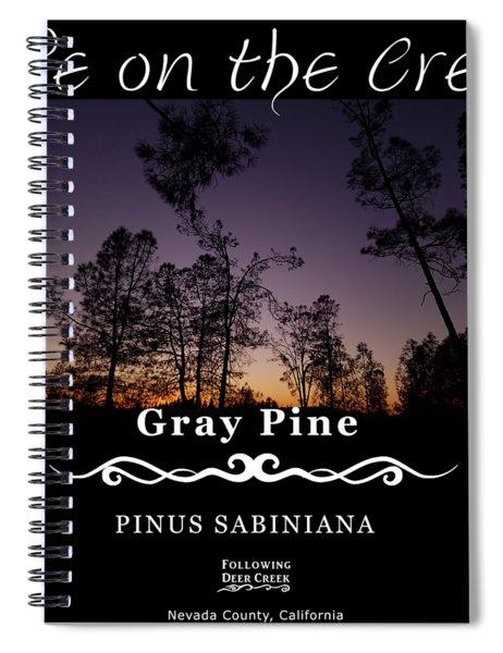 Gray Pine Spiral Notebook