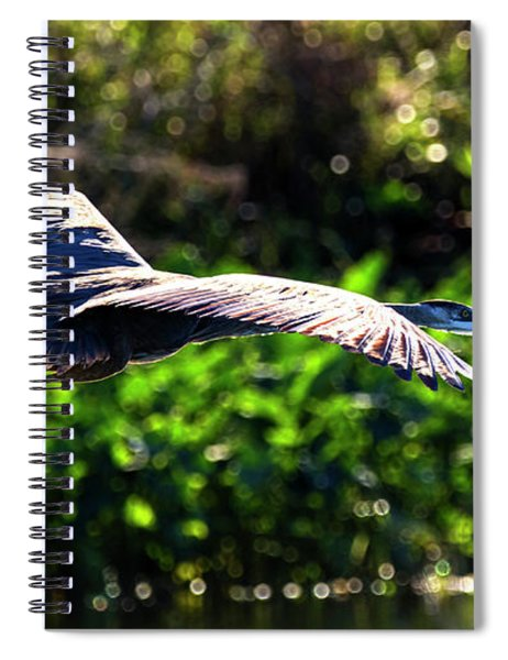 Great Blue Escape  Spiral Notebook