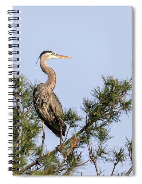 Great Blue Heron 2019-13 Spiral Notebook