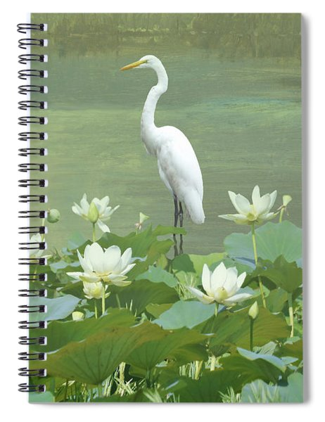 Great Egret And Lotus Flowers Spiral Notebook