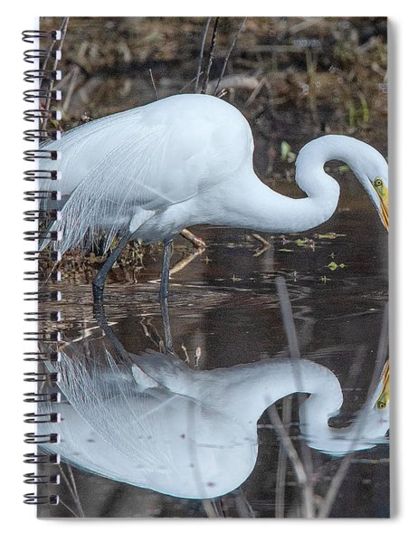 Great Egret In Breeding Plumage Dmsb0154 Spiral Notebook