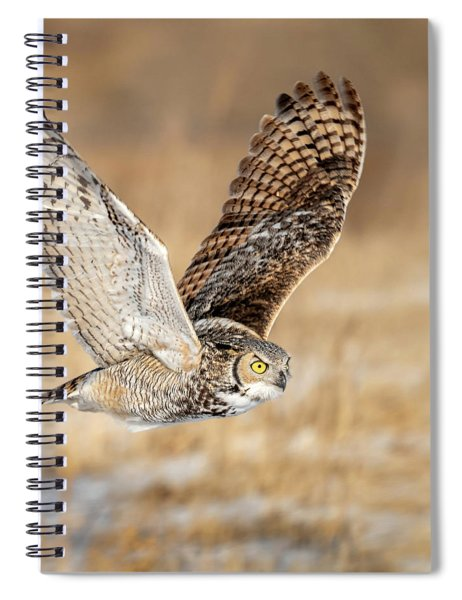 Great Horned Owl In Flight Spiral Notebook