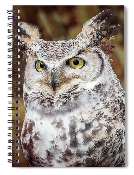 Spiral Notebook featuring the photograph Great Horned Owl Portrait by Patti Deters
