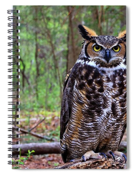 Great Horned Owl Standing On A Tree Log Spiral Notebook
