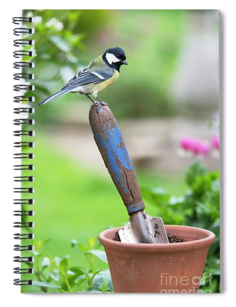 Spiral Notebook featuring the photograph Great Tit Standing On A Garden Trowel  by Tim Gainey