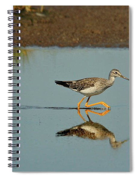 Greater Yellowlegs  Spiral Notebook