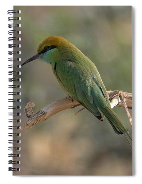 Gree Bee Eater Spiral Notebook