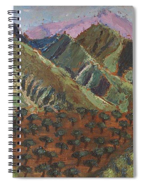 Green Canigou Spiral Notebook