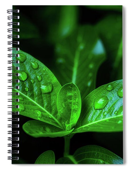 Green Leaf With Water Spiral Notebook