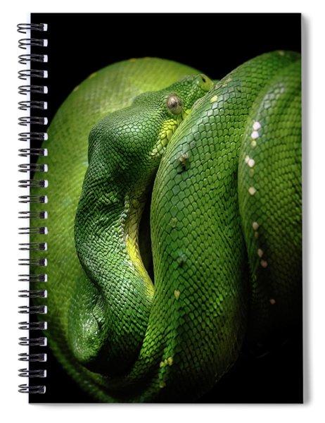 Green Tree Boa Spiral Notebook