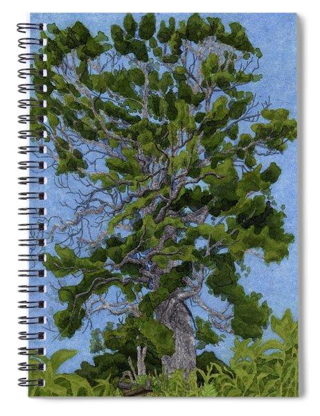 Green Tree, Hot Day Spiral Notebook