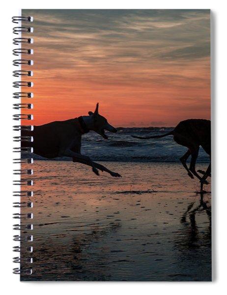 Greyhounds Running On Scheveningen Beach Spiral Notebook