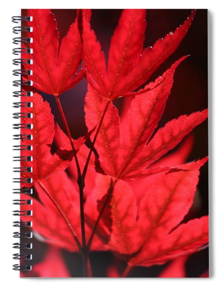 Guardsman Red Japanese Maple Leaves Spiral Notebook
