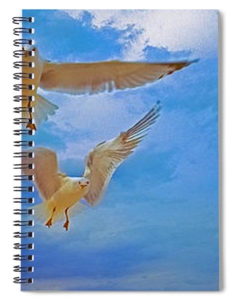 Gulls, Stop, Action,  Spiral Notebook