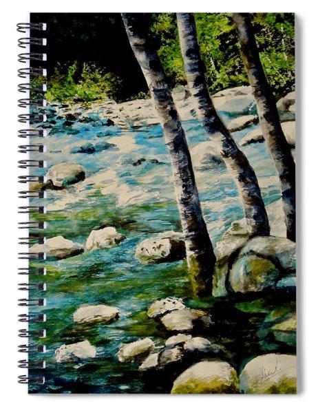 Gushing Waters Spiral Notebook