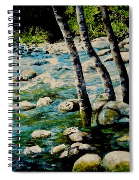 Gushing Waters Spiral Notebook