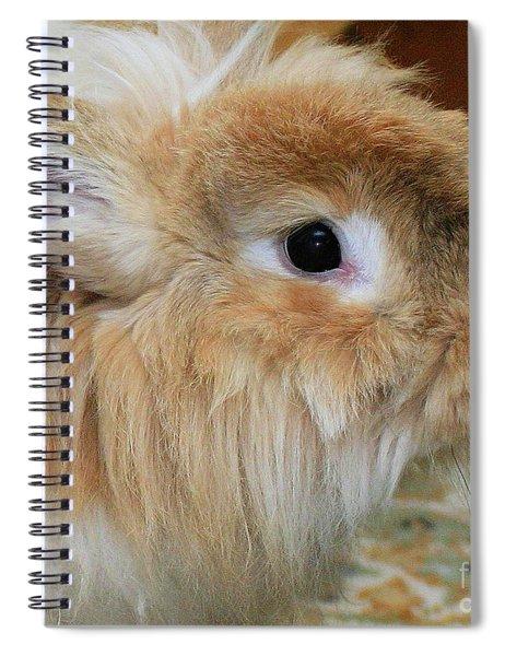 Hairy Rabbit Spiral Notebook