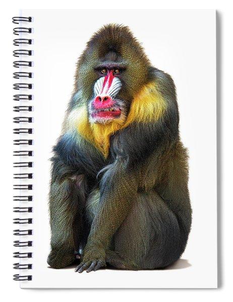 Mandrill Baboon Named Spock Spiral Notebook