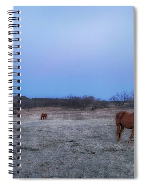 Hanging In The Breeze Spiral Notebook