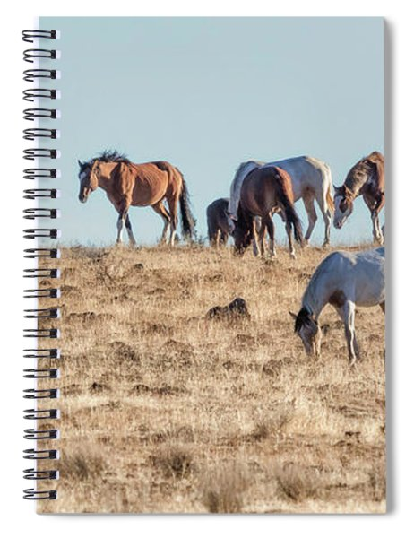 Hanging With Family And Friends - South Steens Wild Horses Spiral Notebook by Belinda Greb