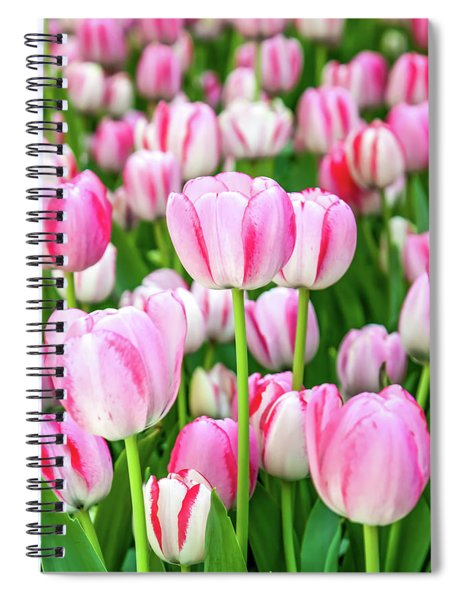 Happy Again Spiral Notebook
