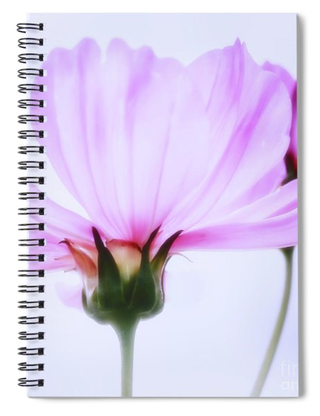 Happy All The Day Spiral Notebook