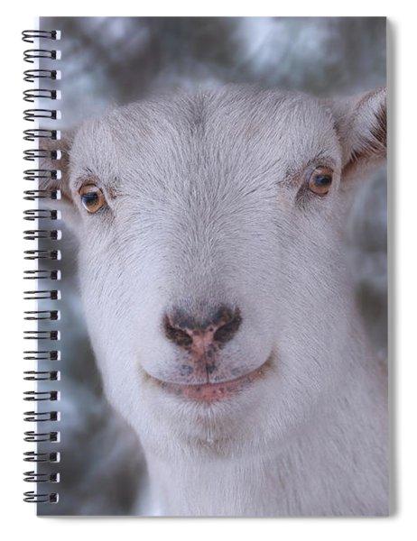 Happy Goat  Spiral Notebook