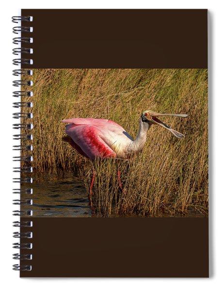 Happy Talk Spiral Notebook