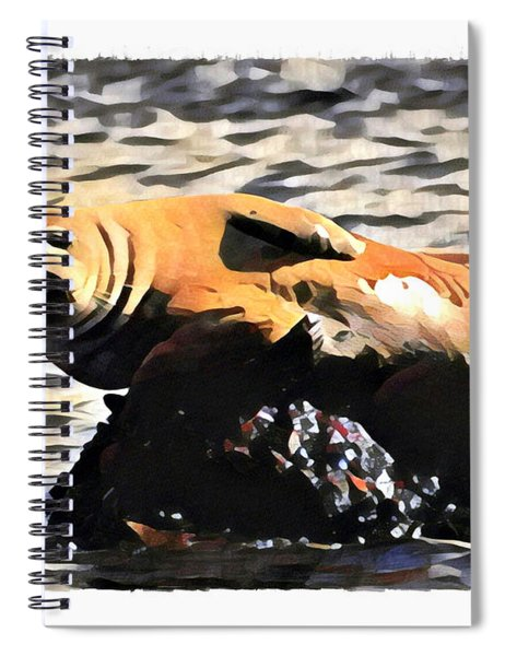 Harbor Seal Resting Spiral Notebook