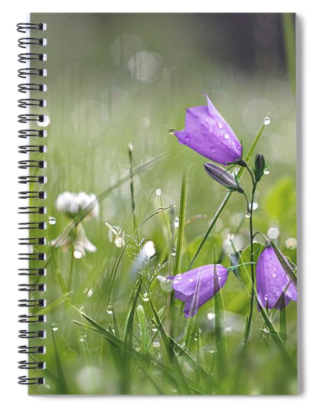Harebells And Water Drops Spiral Notebook
