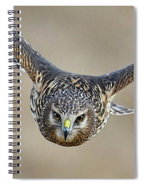 Harrier Eye-to-eye Spiral Notebook