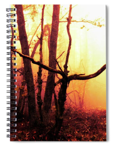 Haunted Forest In A Mystical Light Spiral Notebook