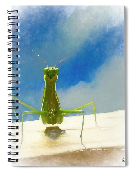 Head On View Of Praying Mantis. Spiral Notebook