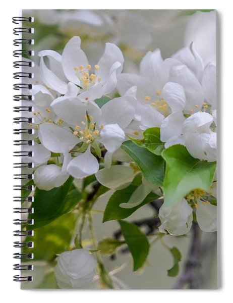 Heavenly Blossoms Spiral Notebook