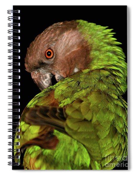 Hello Pretty Spiral Notebook