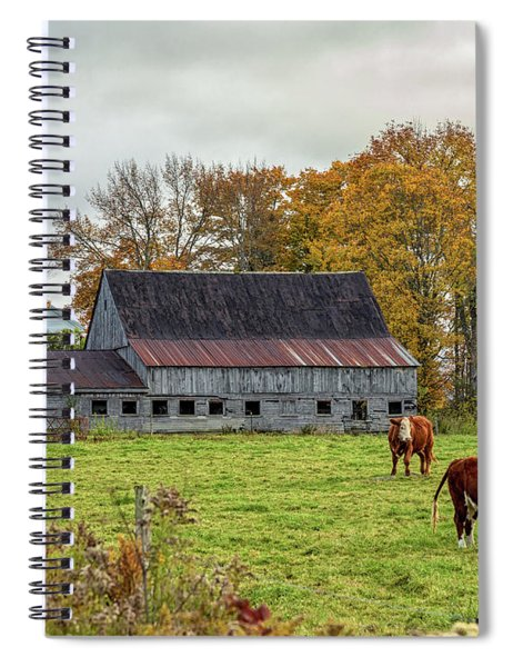 Spiral Notebook featuring the photograph Herefords In Fall by Rod Best