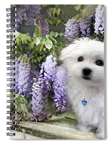 Hermes And Wisteria Spiral Notebook