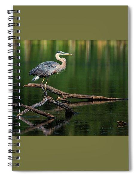Heron 6 Spiral Notebook