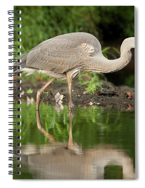 Heron Fishing Spiral Notebook